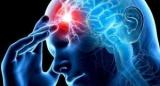 Ученые выяснили, что работа мозга зависит от времени года