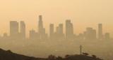 Ученые обнаружили еще одну опасность жизни в больших городах